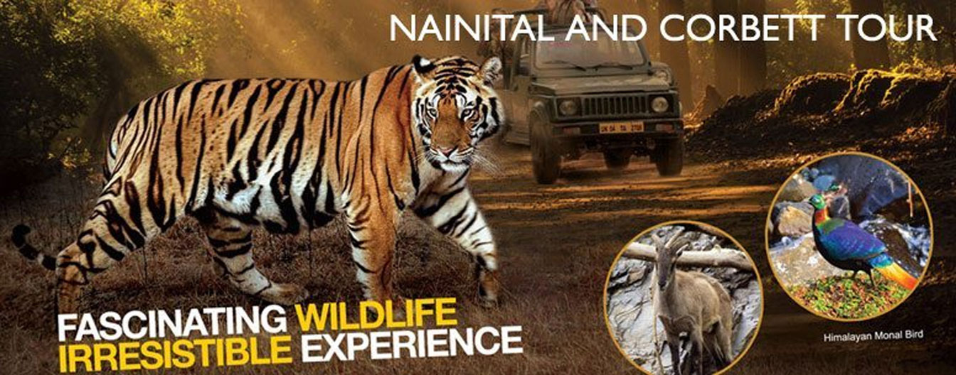 nainital and corbett tour packages with private car and driver rental services
